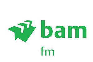 baachu-rain-customer-logos-bam.png